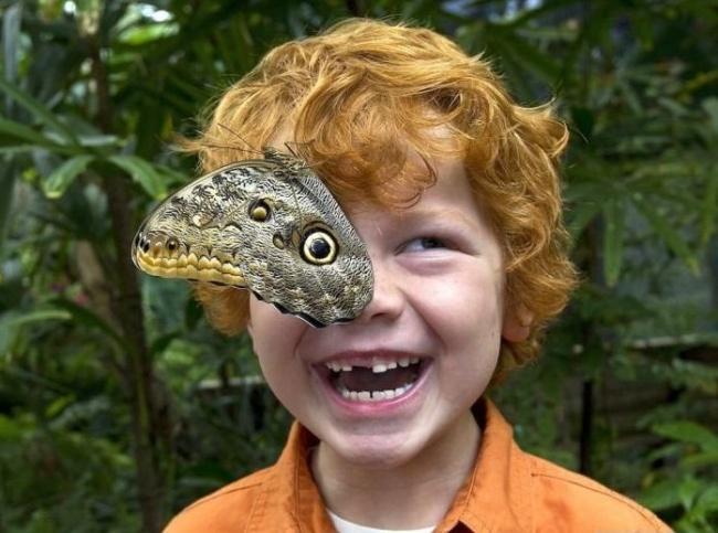 Posisi kupu-kupunya pas banget tuh di mata anak kecilnya, keren kan?.