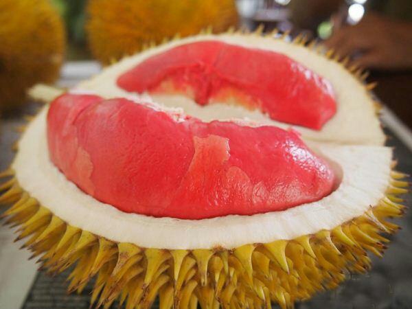 Durian Dabang Nama Dabang diambil dari singkatan Durian Abang yang berarti durian merah. Durian ini berasal dari banyuwangi. Tapi durian ini ukurannya kecil. Bahkan durian yang paling besar pun beratnya hanya mencapai 2 kilogram saja.
