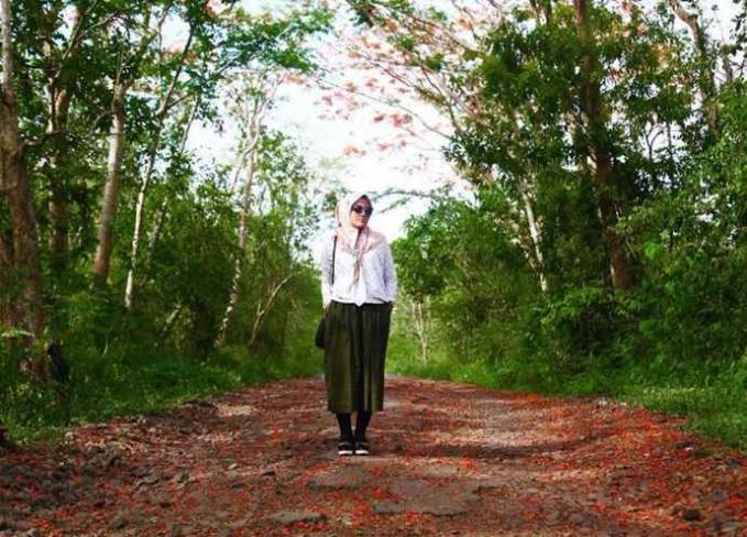 Amati Kupu-Kupu Cantik di Hutan Evergreen Setelah masuk dengan membayar HTM yang murah meriah, kamu bakalan memasuki area hutan. Jalan yang menyerupai terowongan hijau ini menjadi satu-satunya jalan untuk bisa mencapai padang Savana. Selain pemandangan serba hijau, di hutan yang di dominasi pohon tropis ini kamu bakal menemukan beragam macam spesies hewan. Di saat musim hujan yang biasa terjadi di bulan Januar – Februari, hutan Evergreen benar-benar cantik dan bakal membuatmu terpana. Di hutan Evergreen ini, kamu akan mudah sekali menemukan sekumpulan kupu-kupu di genangan air sepanjang hutan. Bisa dibayangkan cantiknya bukan?