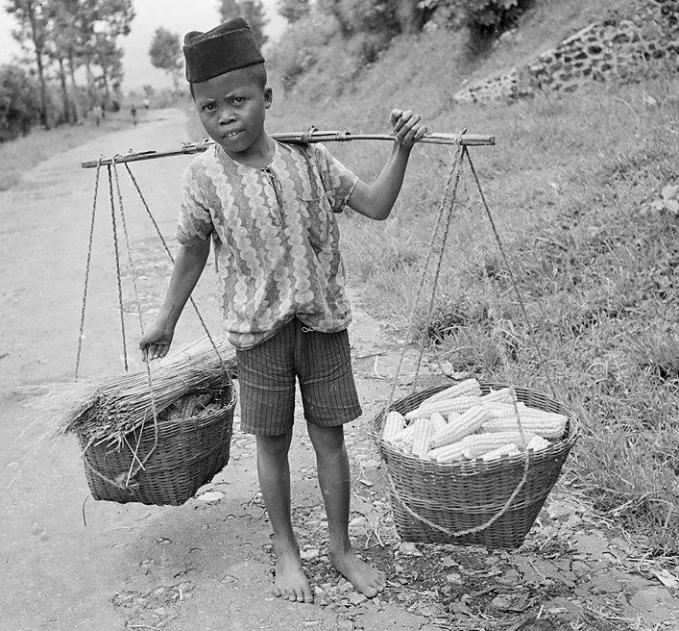 Foto seorang anak laki-laki yang membawa hasil pertanian dengan cara dipikul. Foto ini diambil pada tahun 1947 silam.