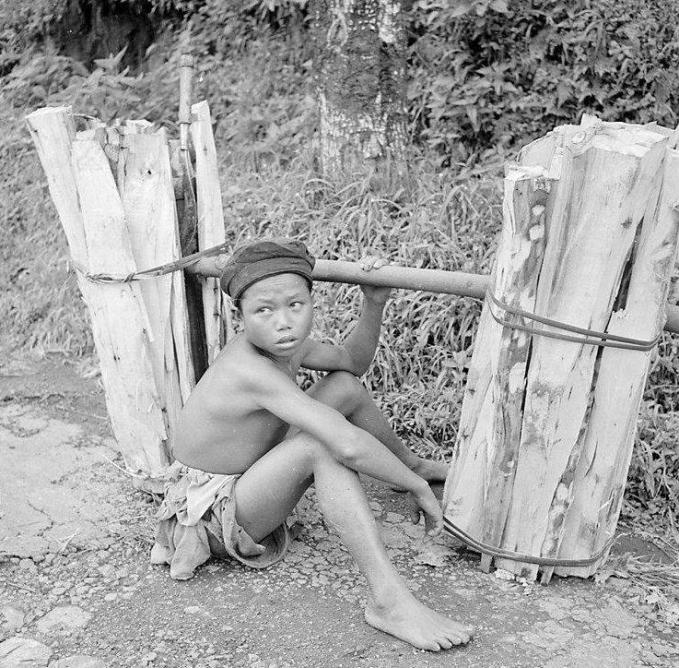 Beban berat juga dirasakan oleh anak pemikul kayu ini Pulsker. Dengan bertelanjang dada dia harus memikul kayu ke tempat tujuan dengan medan yang nggak mudah.