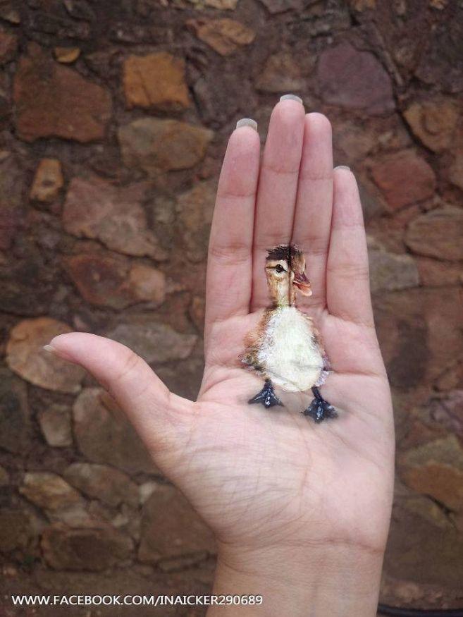 Lukisan anak itik dalam telapak tangan