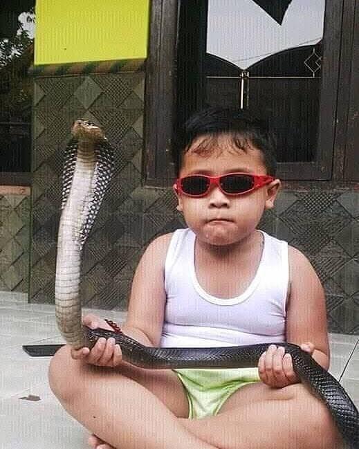 Sudah terlihat jika masa depan anak ini akan menjadi pawang ular yang hebat.