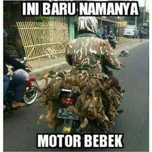 Ini baru yang namanya motor bebek beneran.