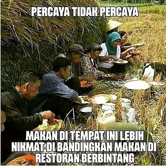 Selain hemat, makan di sawah juga sangat nikmat karena bisa berkumpul bersama.