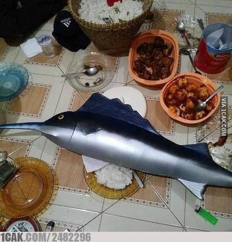 Mengikuti anjuran Bu Susi Pudjiastuti untuk memakan ikan setiap hari. Tapi nggak gini juga kali.