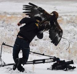 Siapa Bilang Jadi Fotografer Alam Liar Mudah, Ini Buktinya!