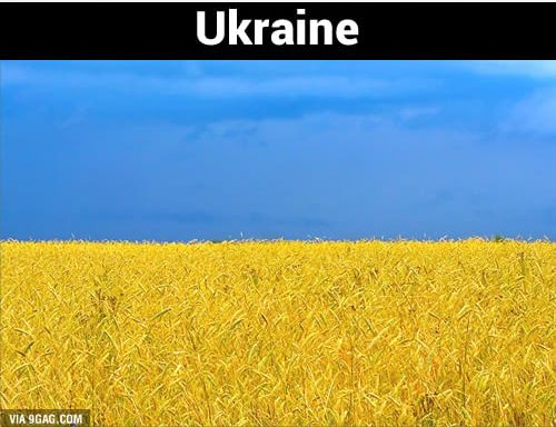 Ladang gandum berwarna kuning dipadu dengan birunya langit terlihat menyerupai motif bendera Ukraina. Keren kan Pulsker?.