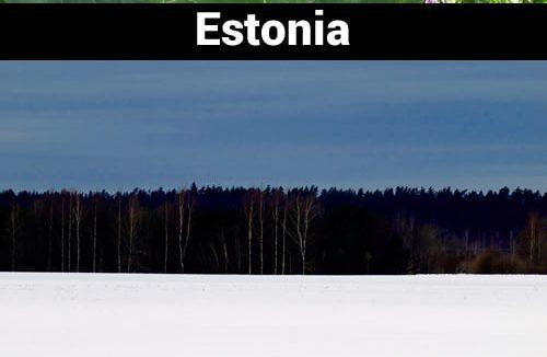 Senada dengan namanya, hamparan es dan salju ini layaknya bendera negara Estonia.