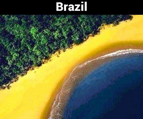 Membentuk pola bendera Brasil jika dilihat sebagian.