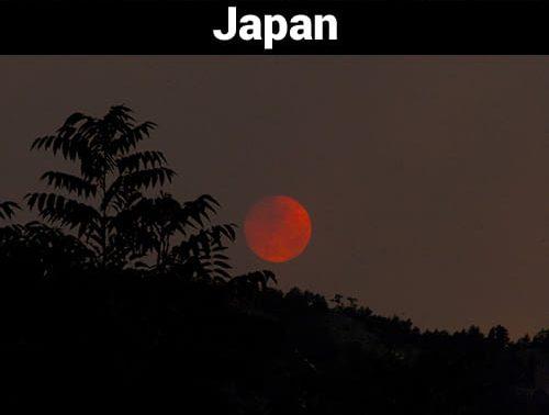 Nggak salah deh kalau Jepang memilih matahari sebagai motif bendera nasionalnya.