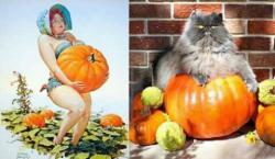 Uniknya Pose Kucing Ini Menirukan Model Jaman Dulu, Bikin Gemes