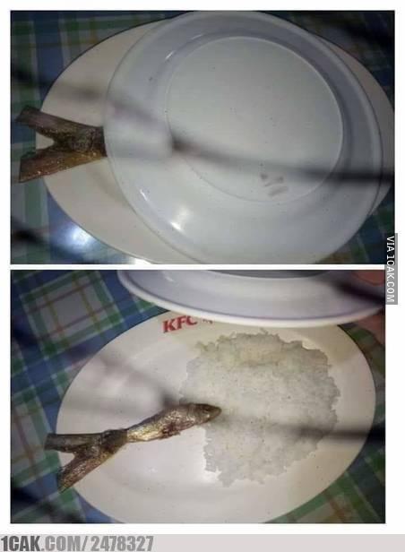 Nggak apa-apa, yang penting makan ikan kata Bu Susi :D
