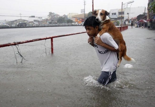 Ketika terjadi banjir bandang di Filipina, anak ini rela menggendong anjing kesayangannya di tengah banjir dan hujan lebat.