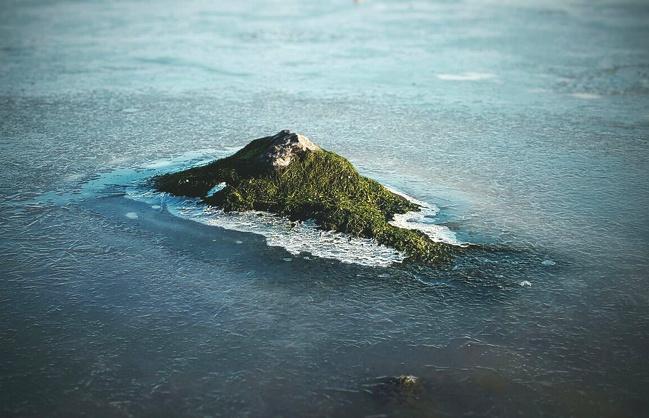 Pasti hampir semua dari kalian nyangka kalau foto ini adalah hamparan pulau di tengah lautan. Salah guys, padahal cuma batu kecil yang diselimuti oleh lumut.
