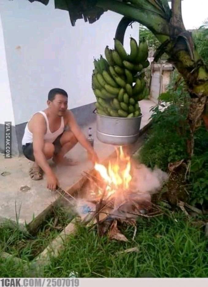 Pernah nggak nyoba merebus pisang langsung pada pohonnya ?