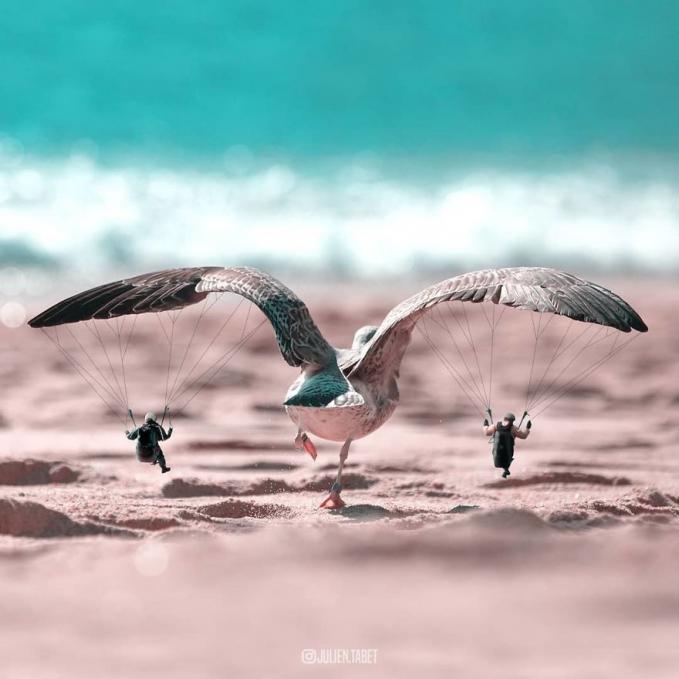 Burungnya sedang membawa dua orang yang melakukan paralayang.