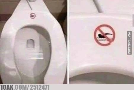 Dilarang berenang, mungkin peraturan ini dibuat untuk para semut dan serangga.