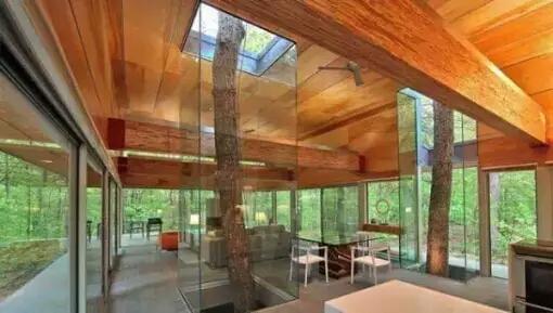 Bangunan yang kokoh terlihat lebih alami dengan adanya pohon yang hidup di dalamnya.