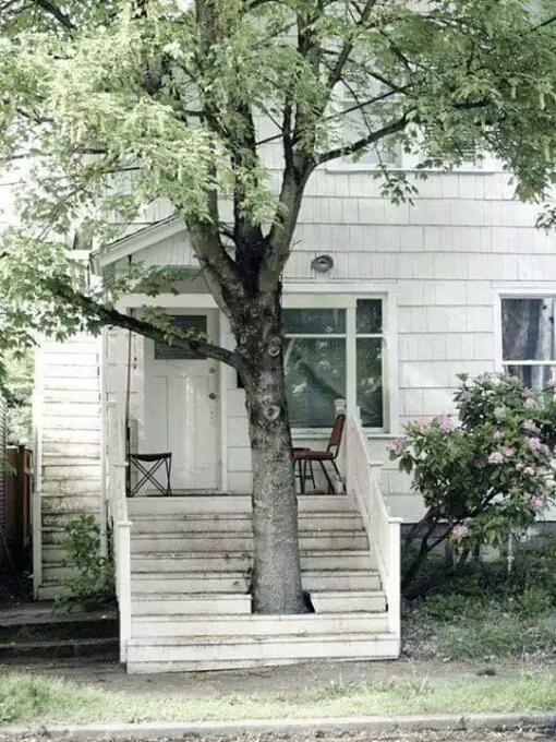 Semakin sejuk dengan pepohonan di depan rumah
