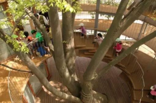Lebih artistik dengan pohon di tengah bangunan sehingga tangga dibuat memutari pohon. Unik sekali.