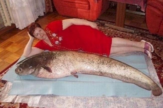 Dengan PD-nya wanita ini berpose bersama seekor ikan lele raksasa. Nggak takut digigit tuh?.