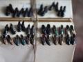 Gokil, Miniatur Ini Punya Bentuk yang Mirip Banget Sama Aslinya