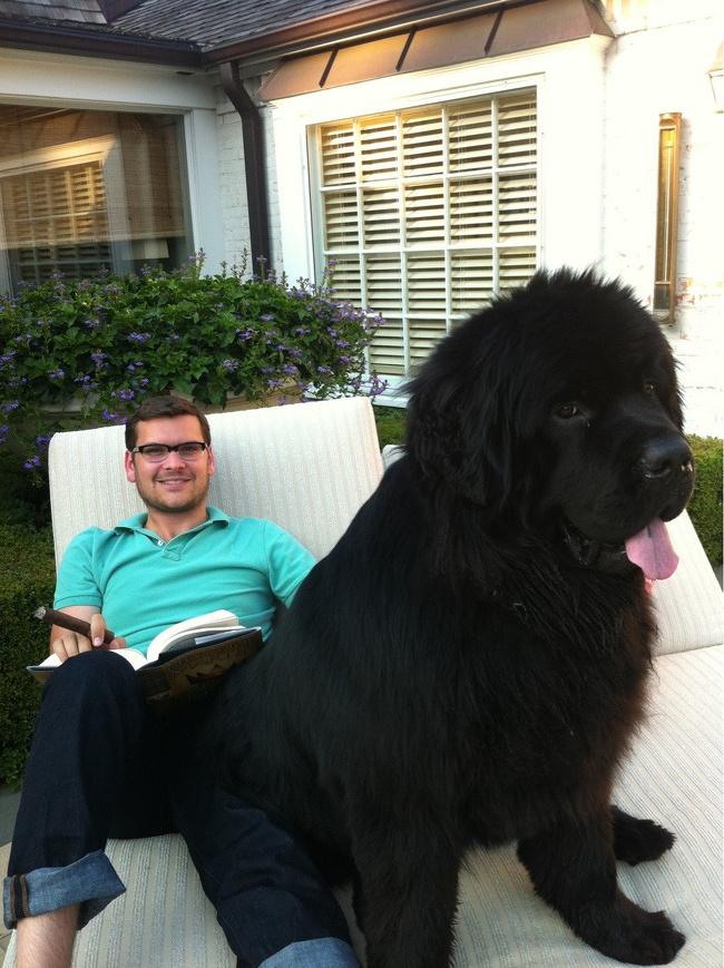 Nemenin pemiliknya nyantai sambil baca buku di halaman belakang. Gede banget ya Pulsker ukuran tubuh anjing-anjing ini. Gimana, jadi pengen melihara juga nggak nih anjing raksasanya dirumah?.